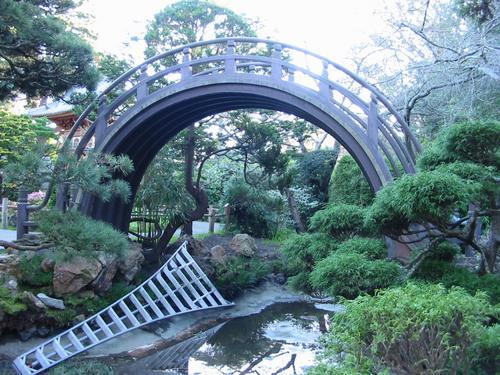 Japanese Tea Garden Moon Bridge And Ladder