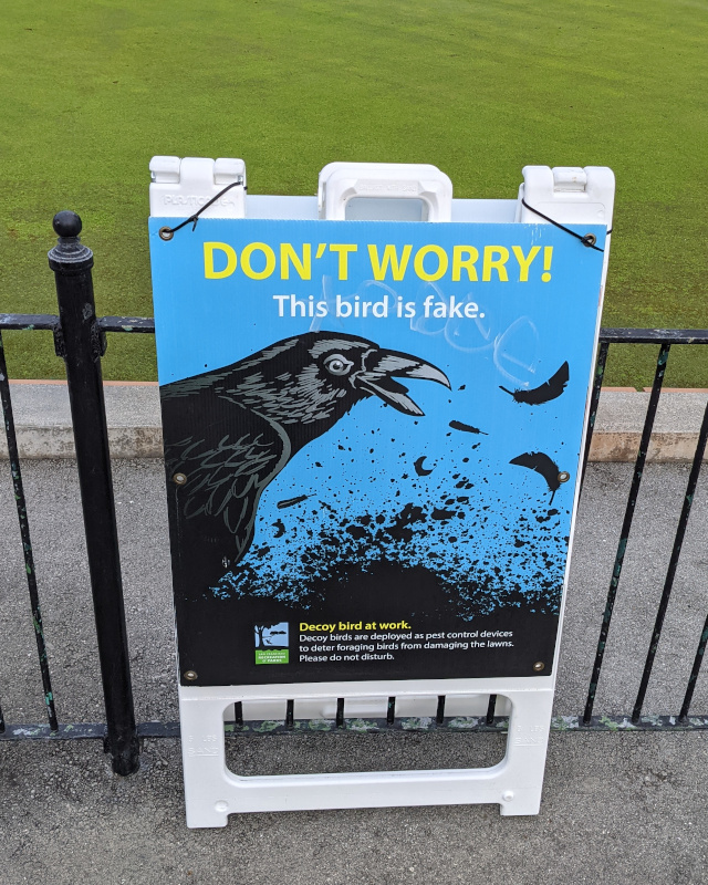 photo of sign in front of a smooth lawn-bowling lawn. Sign reads: Don't Worry / This bird is fake. / [picture of a corvid] / Decoy bird at work. / Decoy birds are deployed as pest control devices to deter foraging birds from damaging the lawns. Please do not disturb.
